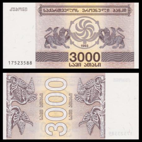 Géorgie, P-45, 3000 kuponi, 1993