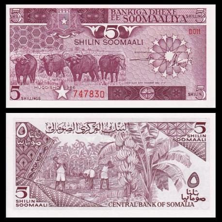 Somalia, p-31b, 5 shilin, 1986