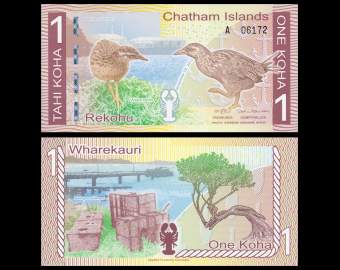 Chatham Islands, P-NL, 1 Koha, 2013
