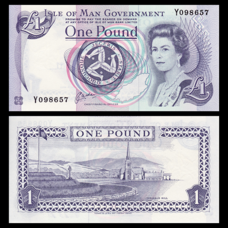 Isle of Man, P-40b, 1 pound, 1991