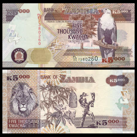 Zambie, P-45g, 5000 kwacha, 2011