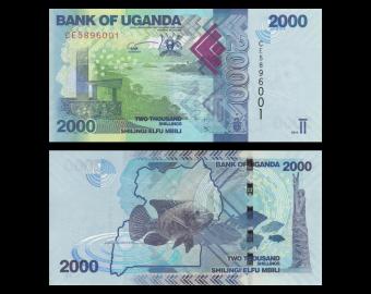 Ouganda, P-50e, 2000 shilingi, 2019