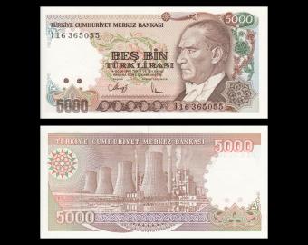 Turkey, P-198, 5000 lira, 1990