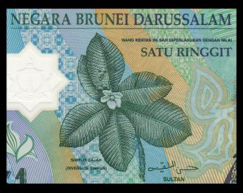 Brunei Darussalam, P22b, 1 ringgit, Polymer, 2007