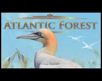 Atlantic Forest, NonLegal, 43 AvesDollars, 2019