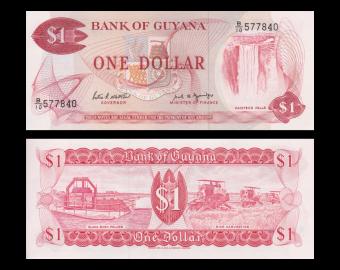 Guyana, P-21f, 1 dollar, 1989